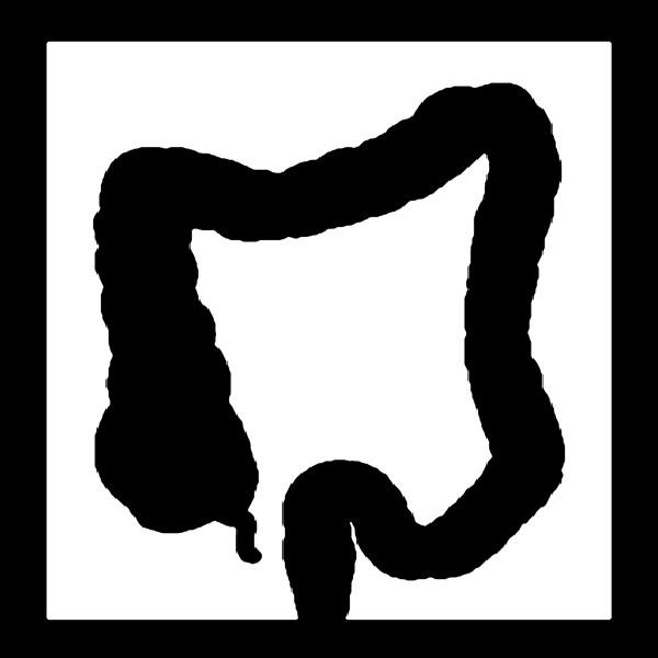 2009-11-02