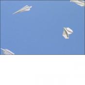 2002-36-02